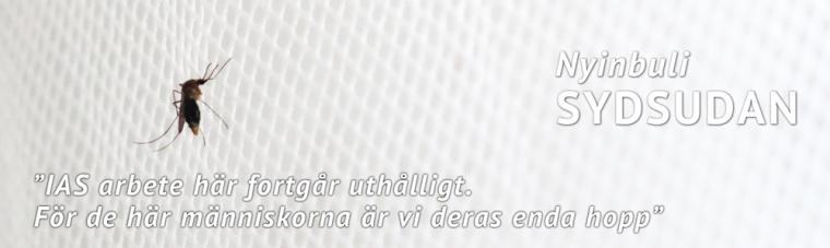 Mosqito1000x300Svenska