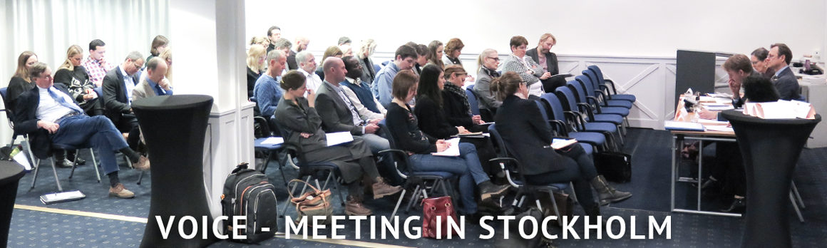 NGOvoiceMeetingStockholmMarch2017-4033